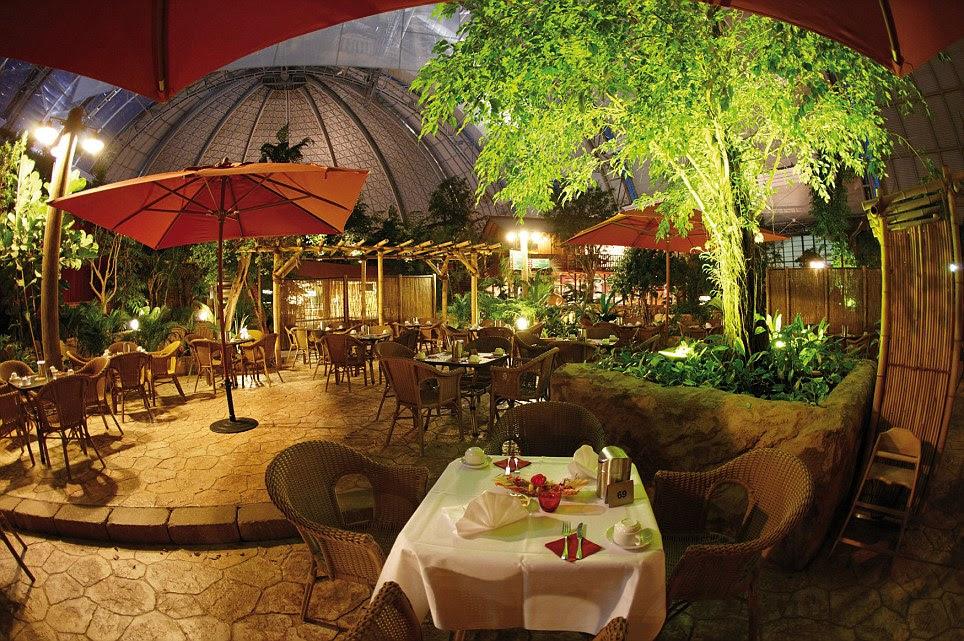 En algún lugar de la cena?  Los restaurantes ofrecen una vista de la playa, la selva tropical, y ...  un techo