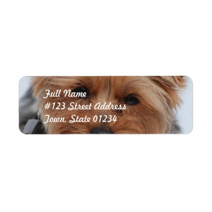 Yorkie Mailing Labels