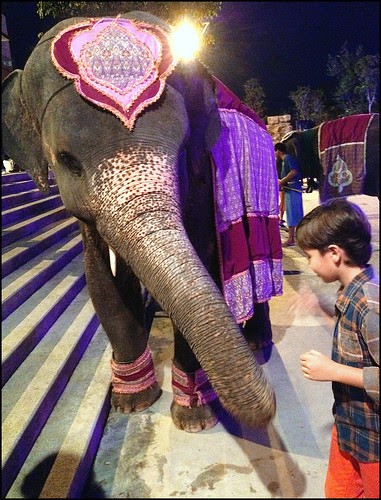 My boy and elephant at Siam Niramit