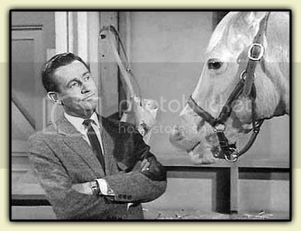 Wilbur and Mister Ed