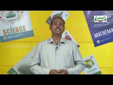 யாமறிந்த மொழிகளிலே Std 11 தமிழ் திருக்குற்றாலக்குறவஞ்சி Kalvi TV