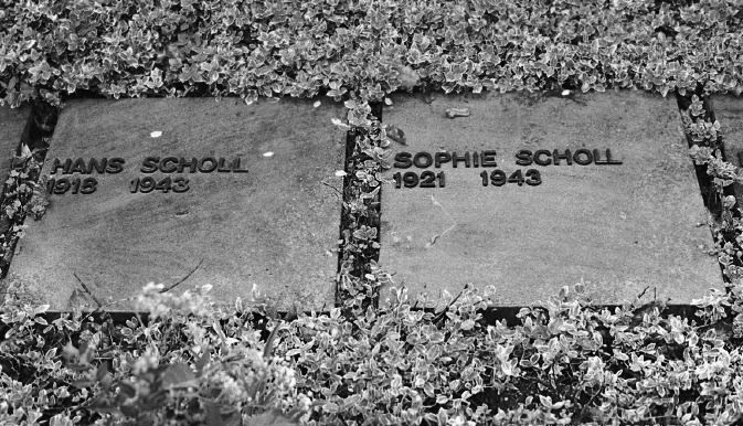 http://www.holocaustresearchproject.org/revolt/images/Scholl%20gravestones.jpg