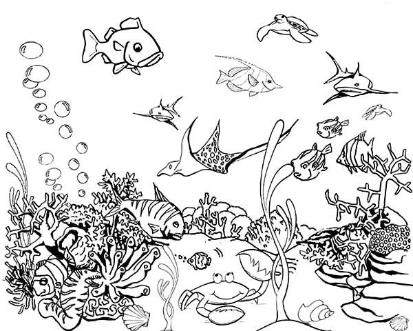 Fishtank coloring, Download Fishtank coloring for free 2019