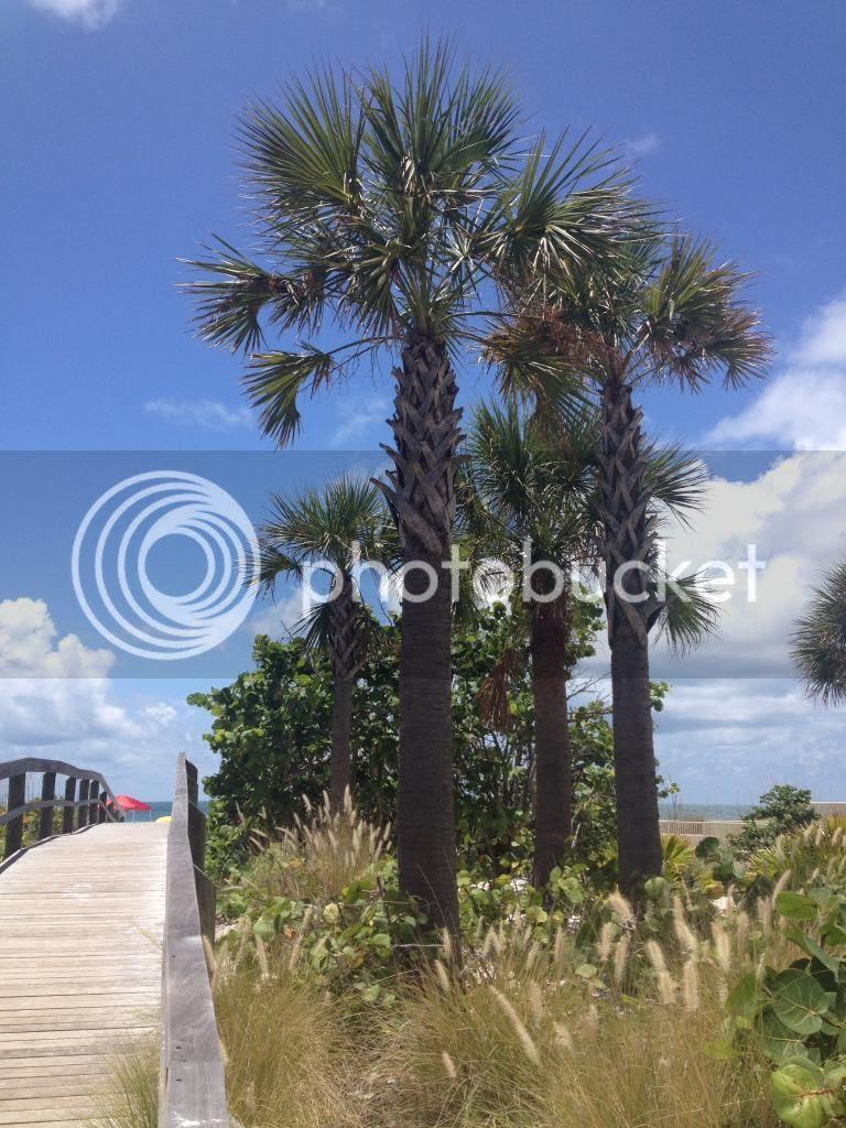 Beach inlet on Florida Gulf Coast