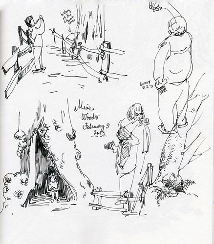February 2013: Muir Woods