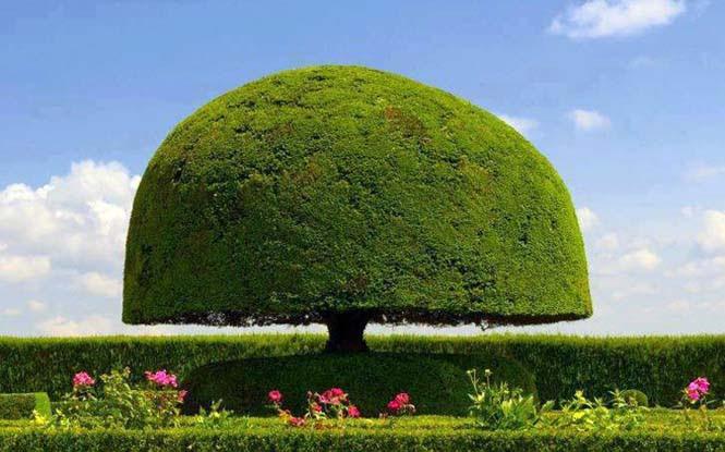 Κήποι αριστουργήματα (3)