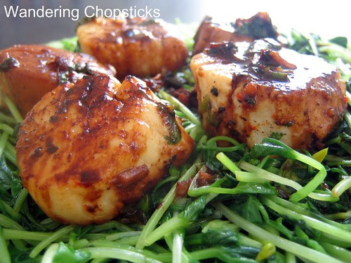 Scallops and Pea Shoots 1