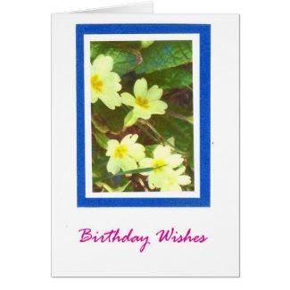 Primroses Birthday Card