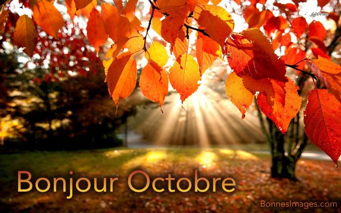 Αποτέλεσμα εικόνας για octobre