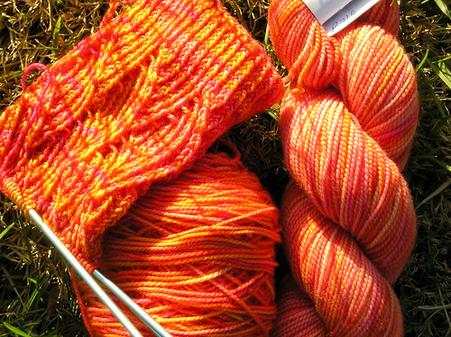new yarn for P sox