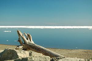 Bering sea at Nome, Alaska