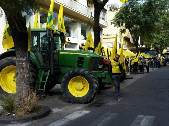 Le proteste degli agricoltori a Catania per difesa del Made in Italy (Ansa)