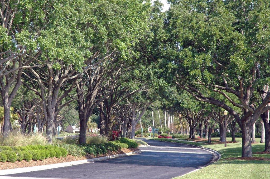 Premier Landscaping Services In Sarasota Fl