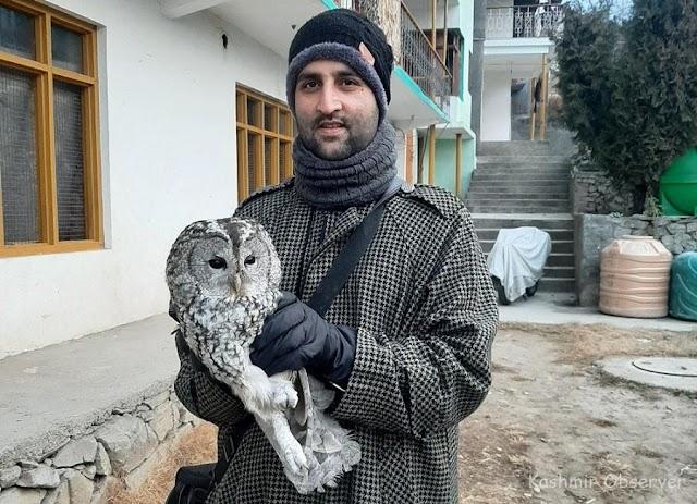 Kashmiri Bird Watcher's Rare Avian Sightings Giving Wing to Passion