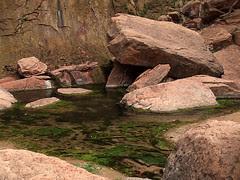 Rocks and Pool