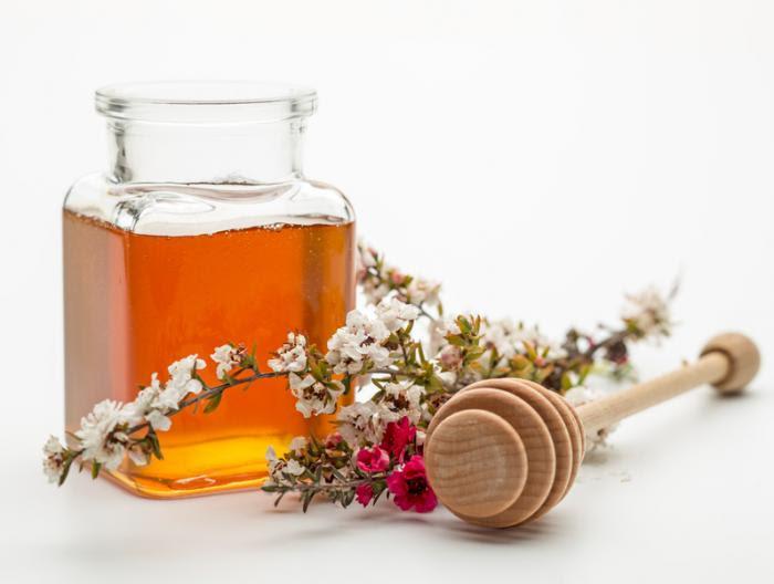 Image result for manuka honey
