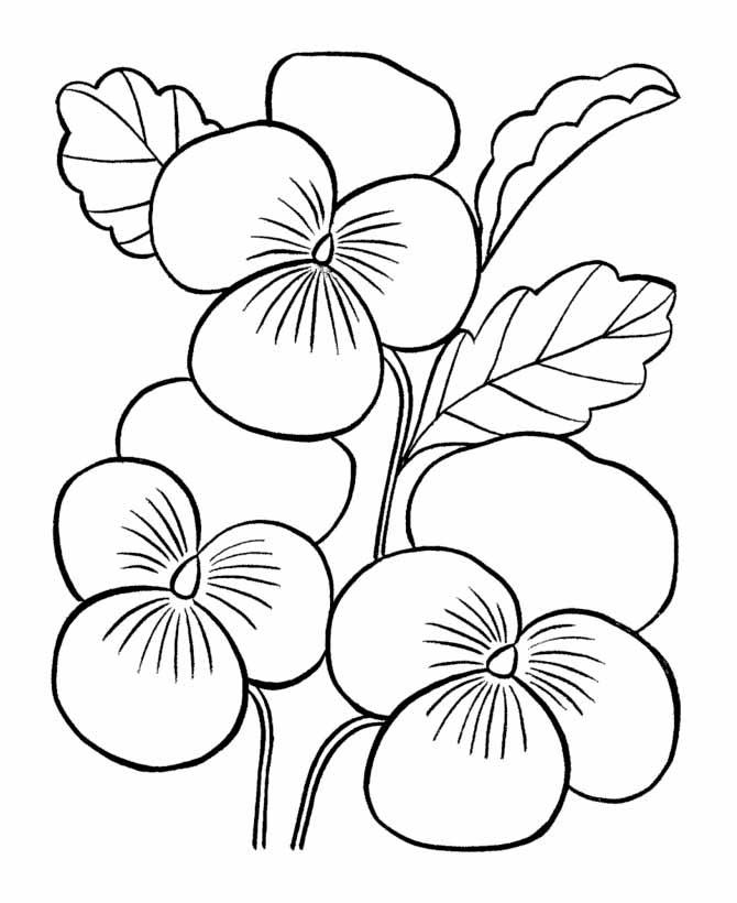 Kwiaty Darmowe Kolorowanki Dla Dzieci
