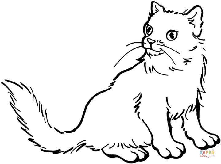 Kolorowanki Kotki I Pieski Do Wydruku