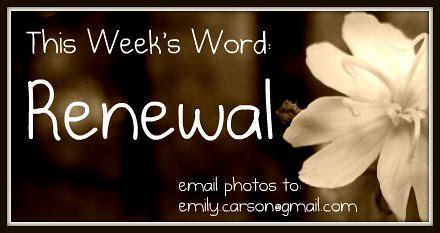 This week's Word, Renewal