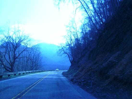 Photos of Newfound Gap Road, Great Smoky Mountains National Park