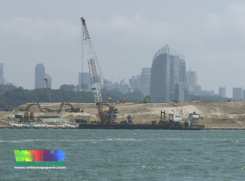 Massive reclamation for new Pasir Panjang Container Terminal