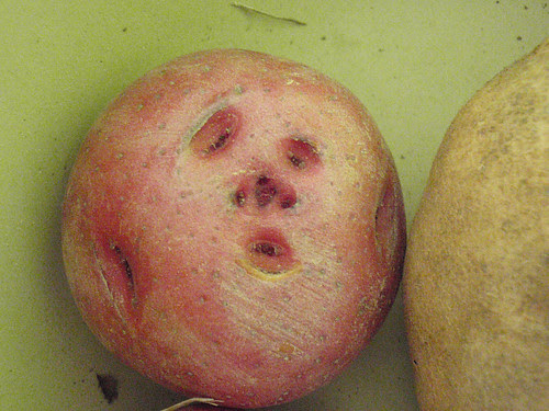 Worried Potatohead