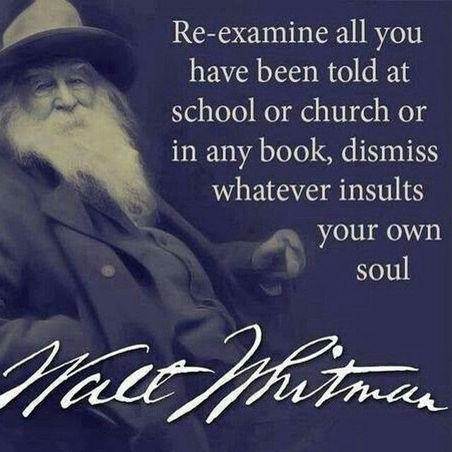 """""""Re-examine all you have to told at school or church or in any book, dismiss whatever insults your own soul.""""  ~Walt Whitman"""