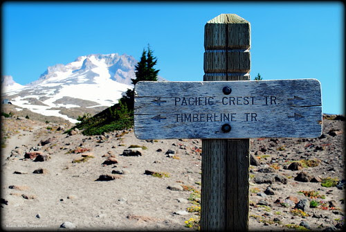Trailhead to Paradise Park outside the Timberline Lodge