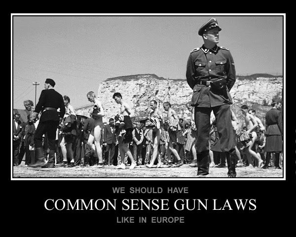 Poster-common-sense-gun-laws-in-europe.jpg