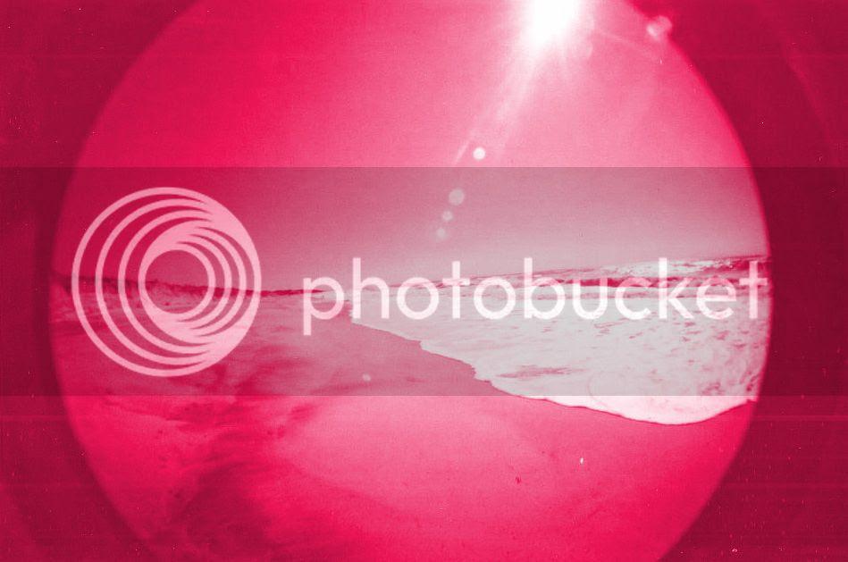 photo 312133_2426986239259_475565687_n_zpse61dc6e5.jpg