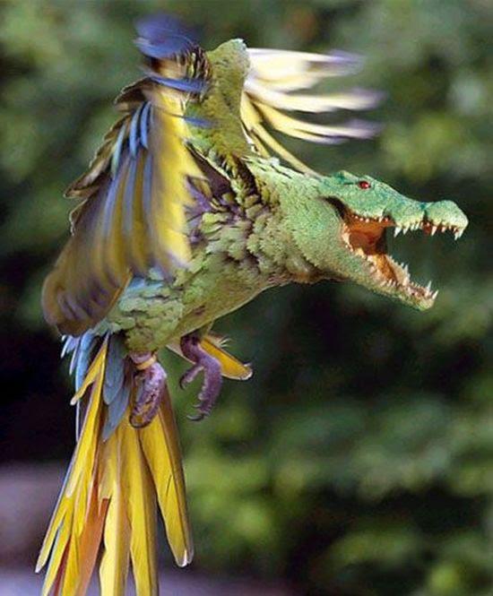 Тигрелка, собарел, чайкула и еще 32 животных из параллельной вселенной животные, фантастика