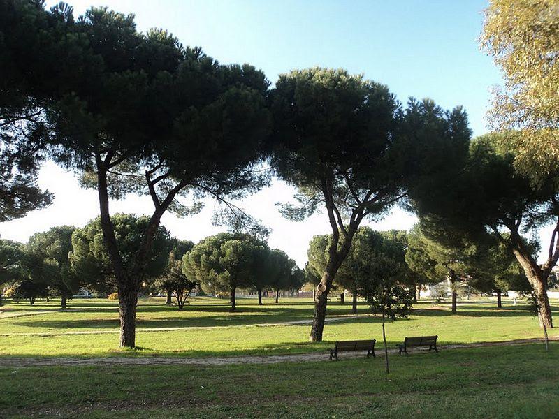 File:Parco Caduti di Marcinelle (Rome) 39.jpg