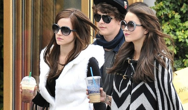 The Bling Ring Movie Review John Likes Movies