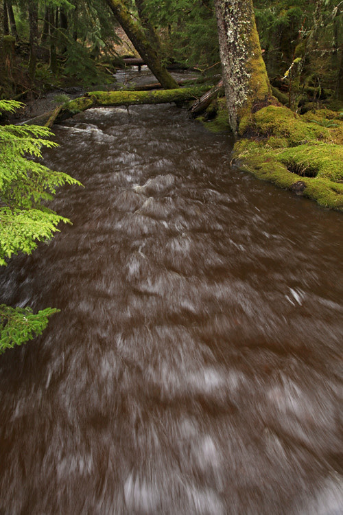 fast and high water in Son-i-Hat Creek, Kasaan, Alaska