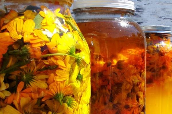 Come fare un oleolito di fiori o foglie