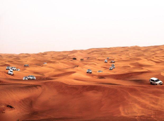 Things To Do In Desert Safari Dubai
