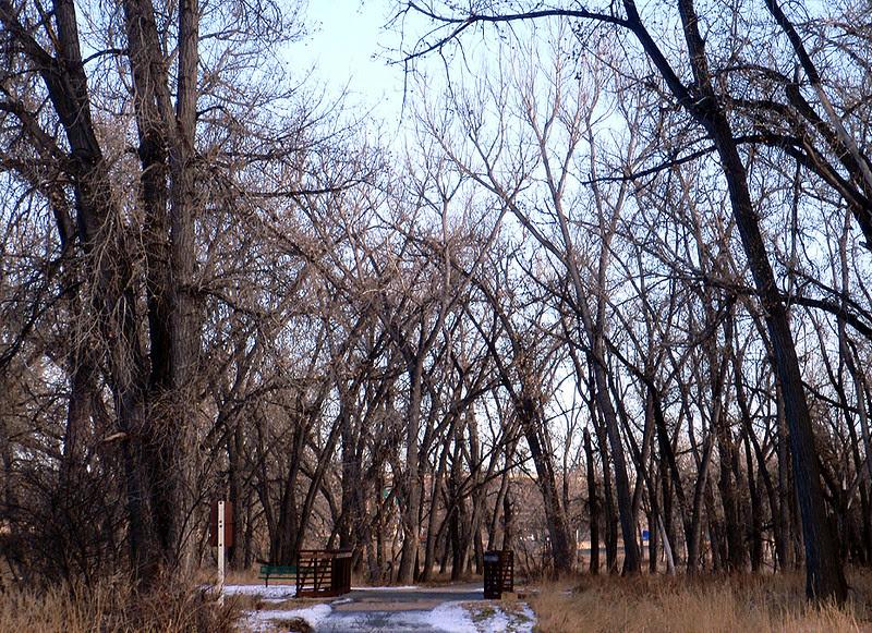 Chatfield State Park