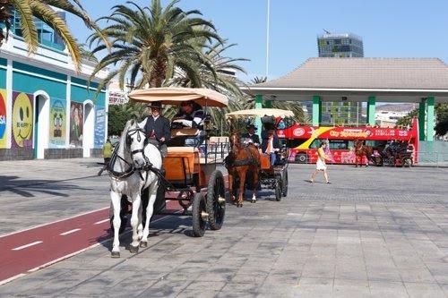 Tartanas en Las Palmas de Gran Canaria