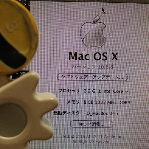 MacBookPro15inch,early2011 メモリ増設前