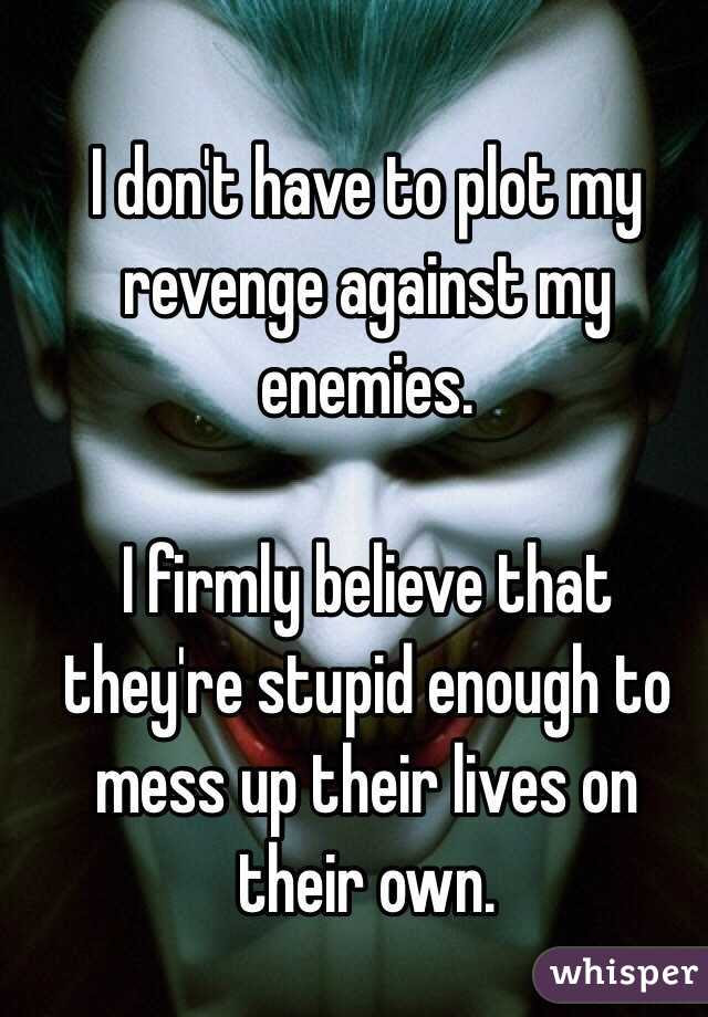 I Dont Have To Plot My Revenge Against My Enemies I Firmly Believe