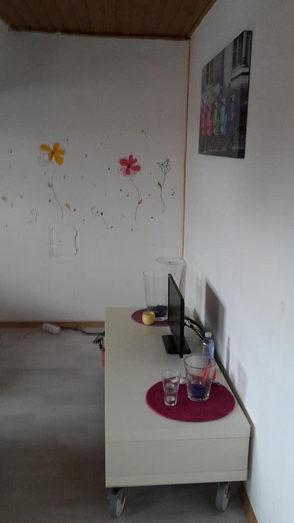 Suche dringend Nachmieter für meine Dachgeschoss Wohnung in Landau  Vermietung 2Zimmer