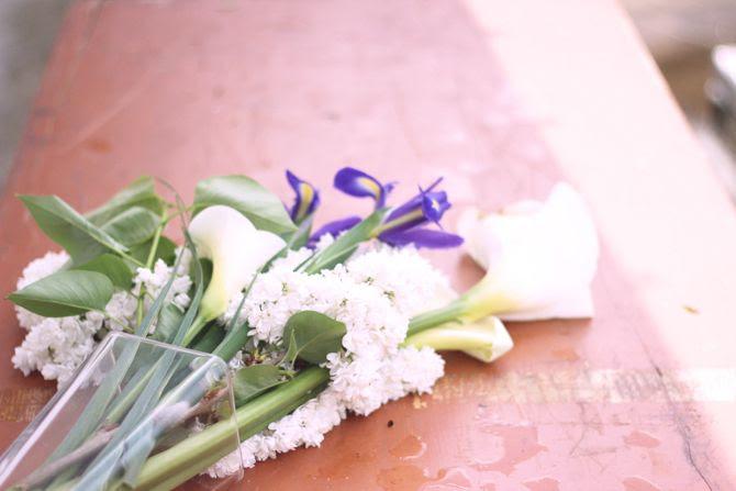 photo 12-fleursprintempsjardin_zps0e1c651b.jpg
