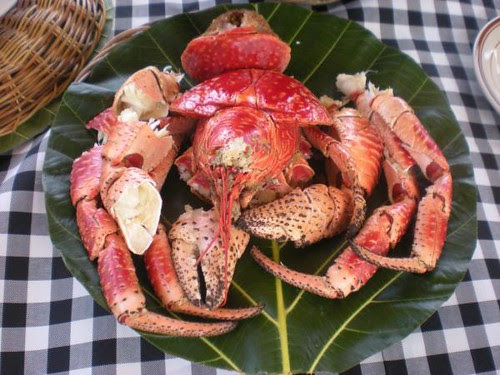 "Kuracha ""coconut crab"", a must taste in batanes."