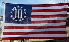 Battle Flag of the Three Percent Pictures, Images and Photos
