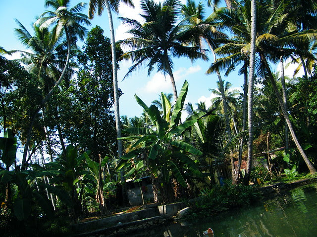 Villages in network of canals in Kollam, Kerala