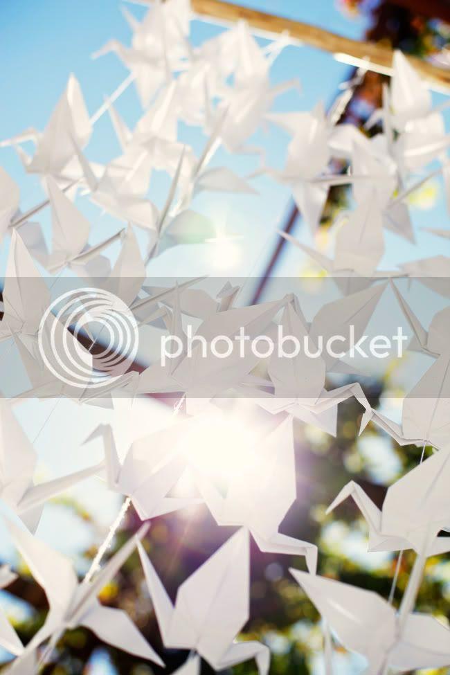 http://i892.photobucket.com/albums/ac125/lovemademedoit/_MG_5587.jpg?t=1304077802