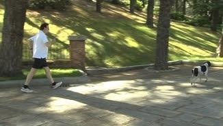 Rajoy passeja amb el seu gos en la jornada de reflexió