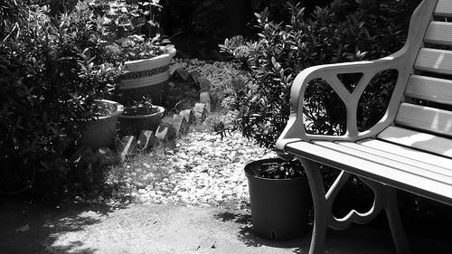 社區小花園