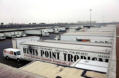 trucks docked at Hunts Point Produce Market (by: Bryan Pace via City Spoonful)