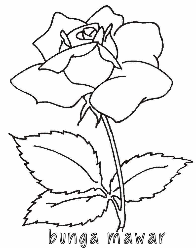 Mewarnai bunga mawar 2